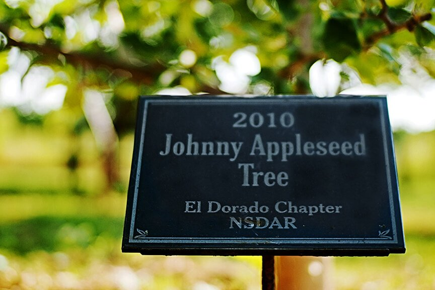 JohnnyAppleseedTree